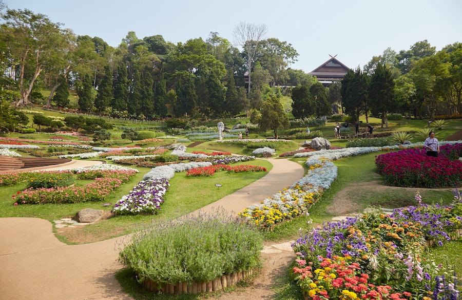 ที่พัก ดอย ตุง Doi Tung Mae Fah Luang